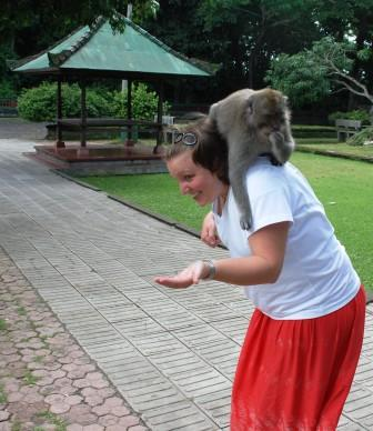 monkey on my back